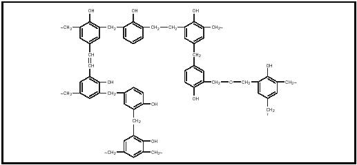 Figure 1. Structure of the phenol-formaldehyde polymer.