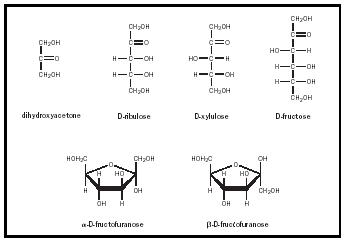 Figure 4. The structures of selected ketoses. Note that dihydroxyacetone does not have a chiral carbon and so does not have D and L variants.