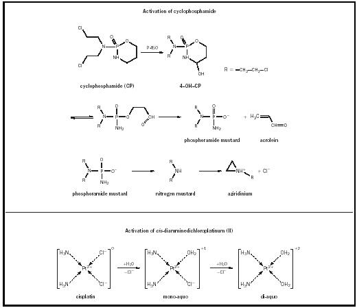 Chemotherapy - Chemistry Encyclopedia - structure, reaction, water ...