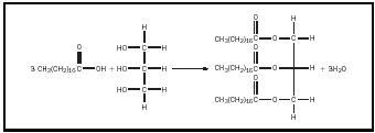 Figure 1. The formation of a triglyceride of stearic acid.