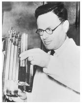 "British biochemist Sir Hans Adolf Krebs, corecipient of the 1953 Nobel Prize in physiology or medicine, ""for his discovery of co-enzyme A and its importance for intermediary metabolism."""