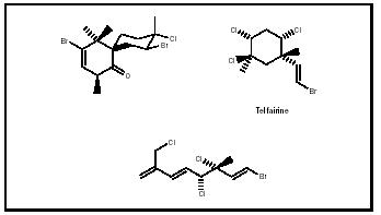 Figure 4. Three of the halogenated terpenes found in red algae, including (at top right) the natural insecticide telfairine.