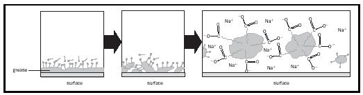 Figure 2. How soap works: The hydrophobic tails of soap molecules embed in grease and oil, breaking it up into particles called micelles that lift off the surface and disperse into water.