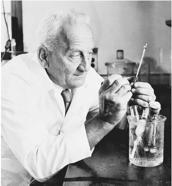 "Hungarian scientist Albert von Szent-Györgyi, recipient of the 1937 Nobel Prize in physiology or medicine, ""for his discoveries in connection with the biological combustion processes, with special reference to vitamin C and the catalysis of fumaric acid."""