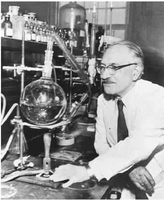 American biochemist Selman Waksman, recipient of the 1952 Nobel Prize in physiology or medicine for his discovery of streptomycin.